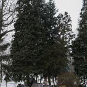 Grabonóg - park z miniaturami wiejskiem zabudowy.